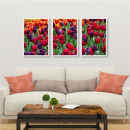 Kit 3 quadros Tulipa Lilás Rosa Amarelo Vermelho Fazenda