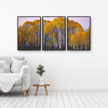 Kit 3 quadros Floresta Árvores Folhas Amarelas Troncos