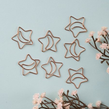 Clips Especial Estrela Molin cx com 12 unidades