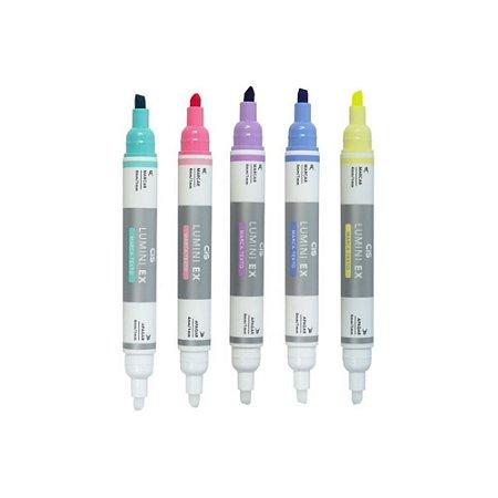 Marca Texto Apagável Lumini Ex c/5 cores