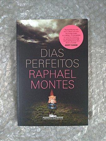 Dias Perfeitos - Raphael Montes (marcas)