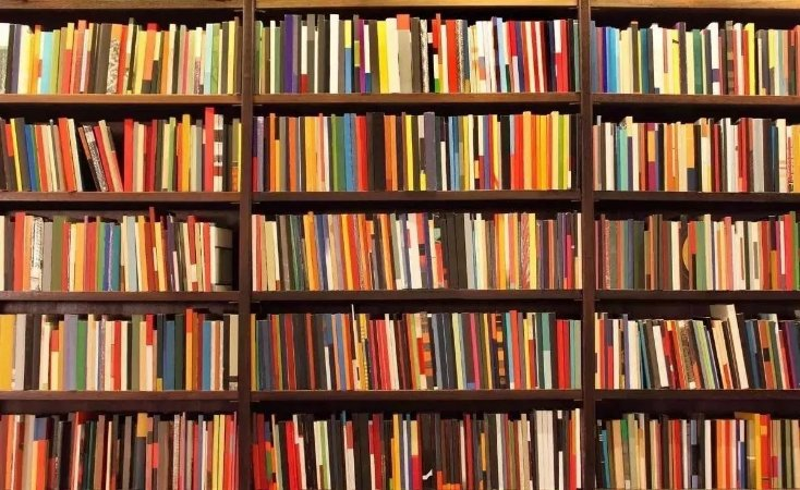 5 livros Isabel