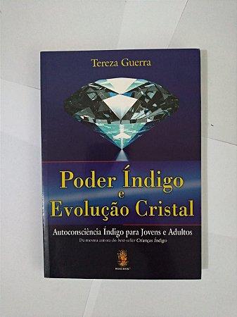 Poder Índigo e Evolução Cristal - Tereza Guerra