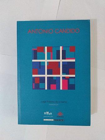 História e Literatura: Homenagem a Antonio Candido - Jorge Ruedas de la Serna (org.)