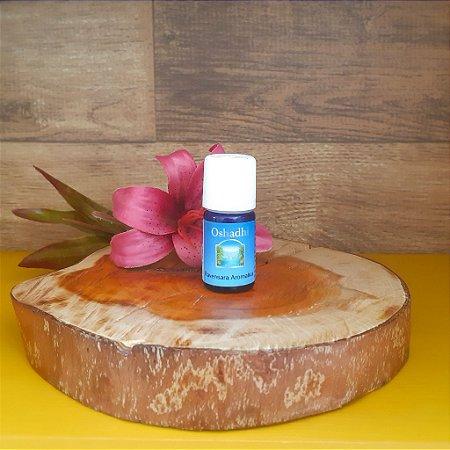 Ravensara Aromatica – Óleo Essencial Selvagem – 5ml- Oshadhi