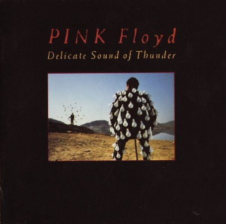 Pink Floyd ‎– Delicate Sound Of Thunder (Cd Duplo)