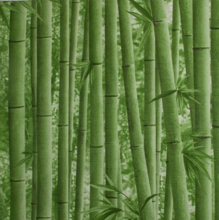 Papel de parede Neonature Estilo Bambuzal Verde PR-0202