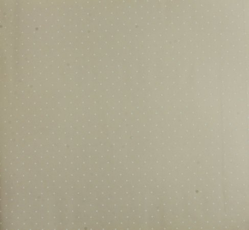 Papel de parede Ola Baby Poa Bege Claro com Branco FA-39103