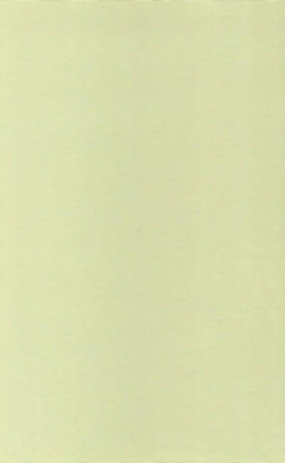 Tecido Voil verde claro liso