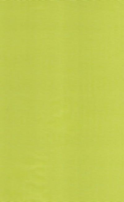 Tecido Voil maça verde liso