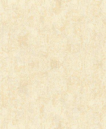 Papel de Parede Skin Areia - JY11803