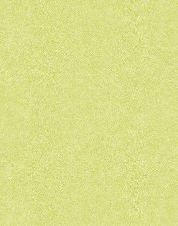 Papel de parede Nido Infantil 8710-7 Liso Verde
