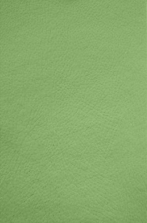 Tecido Corano Verde Odonto 5486