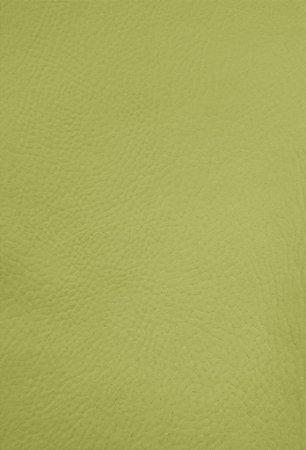 Tecido Corano Verde 3963