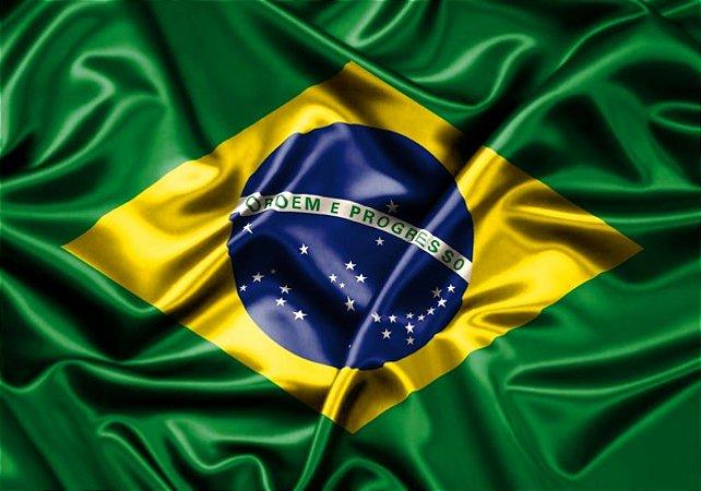 Bandeira do Brasil Copa  Média 10 Un Plástico - Catelândia