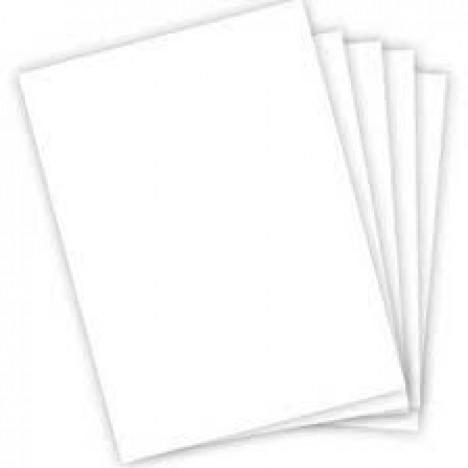 Cartão em Branco para Cestas e Presentes 10 Un - Catelândia