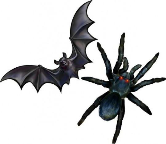 Kit Morcego E Aranha - Grande Decoração Halloween - 70cm Cada - Catelândia