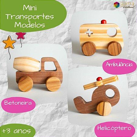 Mini Transportes