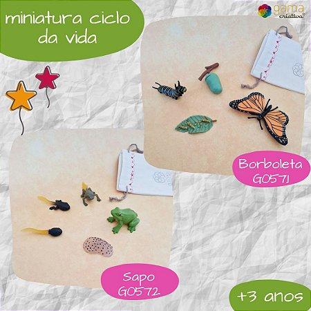 Miniaturas Ciclo da Vida - modelos