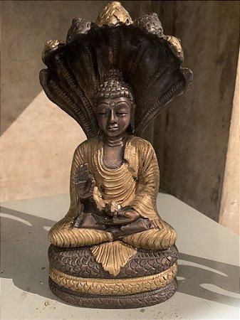 Buda com a Serpente