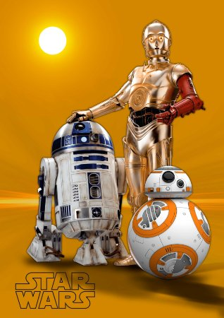 Quadro Decorativo Star Wars All - FS0013
