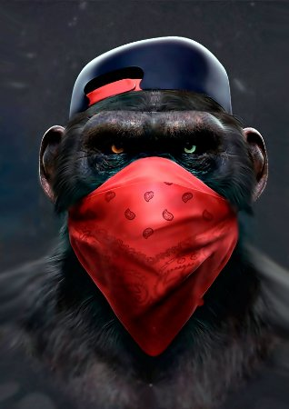 Quadro Decorativo Monkey Talk - AN0004