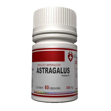 Astragalus 500mg  60 cápsulas
