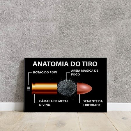Placa decorativa - Anatomia do tiro