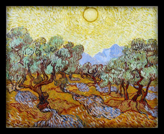 Quadro Decorativo Van Gogh's Olive Trees