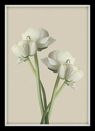 Quadro Decorativo Natureza Flores 2