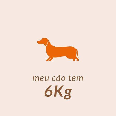 6,0 Kg