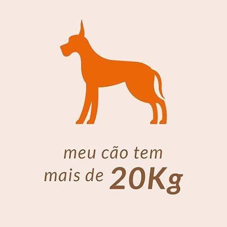 + 20,00 Kg
