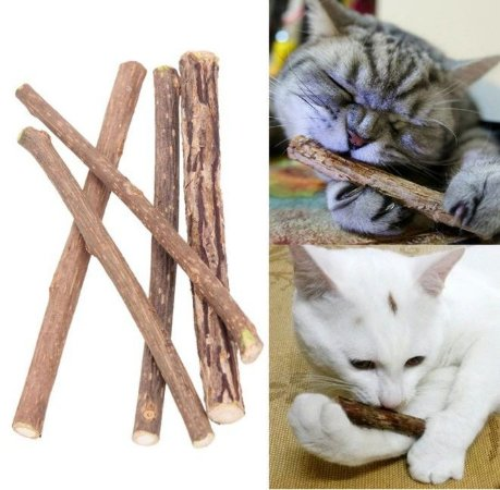 Brinquedo para Gato Matatabi Limpeza Dos Dentes 5 Varetas