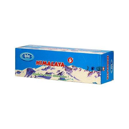 Incenso Bic Himalaya 1 Caixa com 8 Varetas
