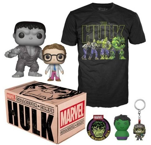 Funko Box Marvel Collector Corps Hulk