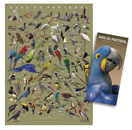 COMBO: Poster + Guia das Aves do Pantanal