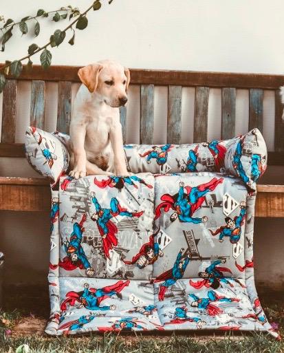 Cama para Cachorro Sofa Pillow Superman LuckyPet
