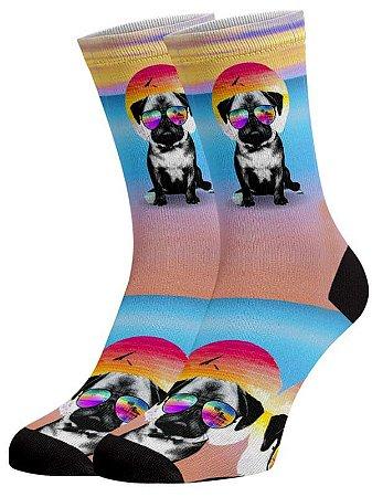 Dog verão meias divertidas e coloridas