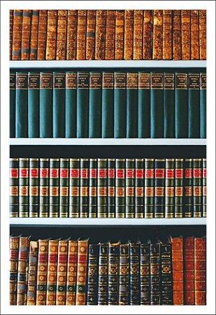 Fundo Fotografico Flex - Biblioteca (1,50 x 2,10 metros)