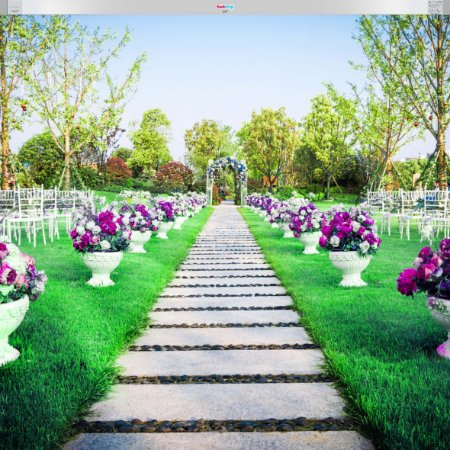 Fundo Fotografico - Jardim Gramado ( 3 Formatos para escolher )