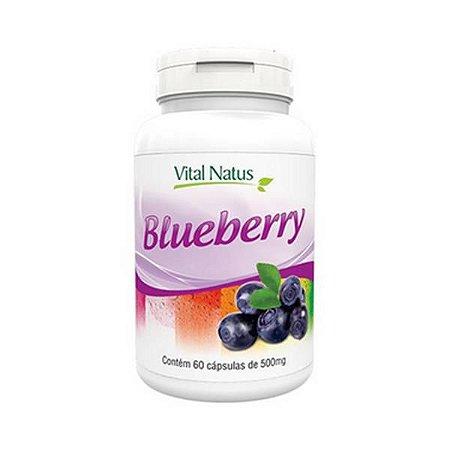 Blueberry VITAL NATUS 500mg 60 Cápsulas