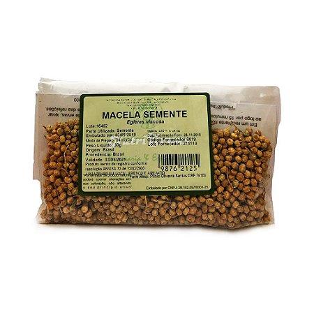 Macela (Egletes viscosa) Semente NUTRI ERVAS 30g