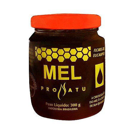 Mel Composto com Extrato de Própolis e Eucalipto PRONATU 300g