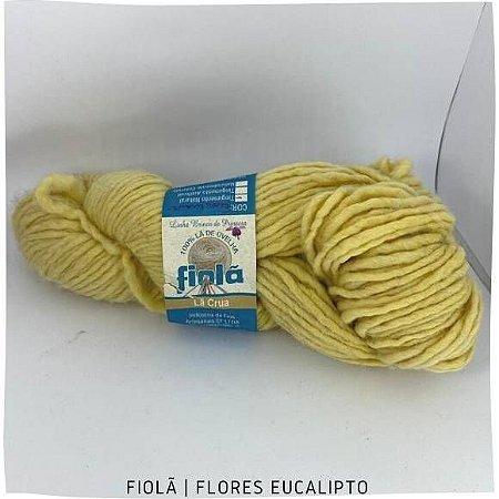 Lã   Corriedale Brinco de Princesa Flores Eucalipto  200gr