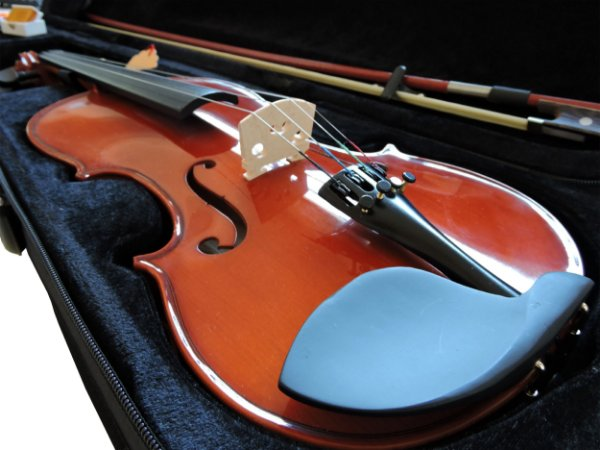 Violino Barth Violin 4/4 Solid Wood + Estojo Bk + Arco + Breu