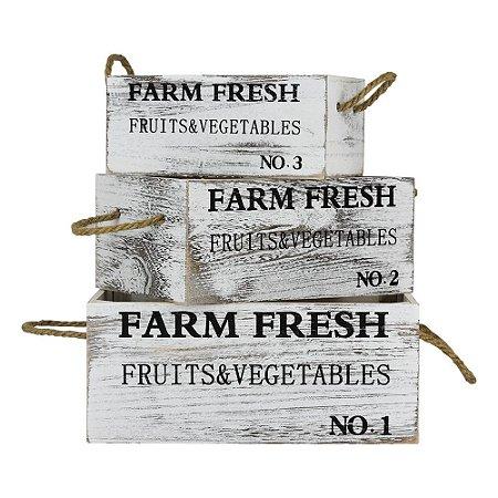 Conjunto Caixa Farm Fresh YC-68