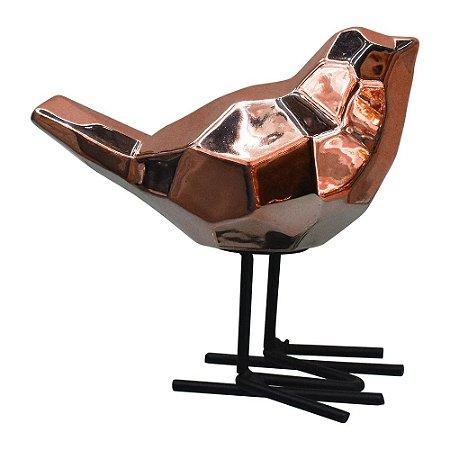 Pássaro Bronze YG-85 C