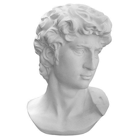 Busto Davi Grande YH-95