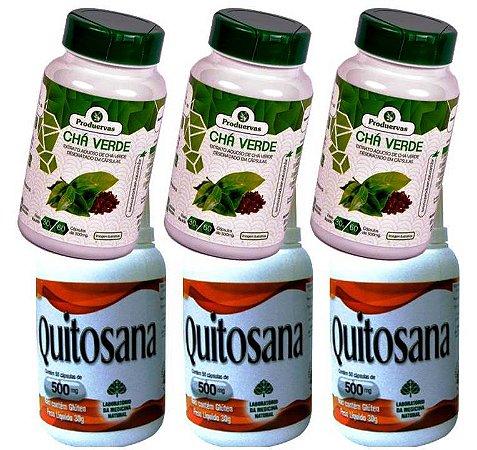 3 Quitosana Bloqueia Gordura Funciona + 3 Chá Verde Puro
