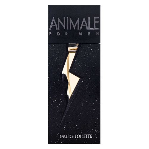 PERFUME ANIMALE FOR MEN MASCULINO EAU DE TOILETTE 100ML